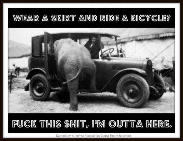 "Caption Competition. Elephant getting in taxi. Caption: ""Wear a skirt and ride a bicycle? Fuck this shit, I'm outta here."""
