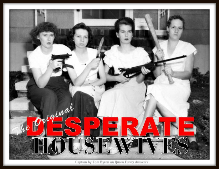 Home Defence Caption Competition Winner - The Original Desperate Housewives